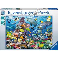 Пазл «На морской глубине» 2000 шт Ravensburger