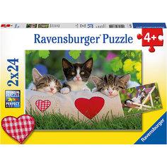 Пазл «Котята отдыхают» 2х24шт Ravensburger