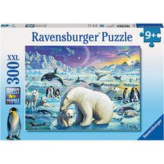Пазл «Полярные животные» XXL 300 шт Ravensburger