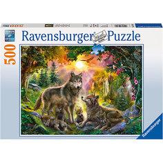 Пазл «Семья волков в лесу» 500 шт Ravensburger