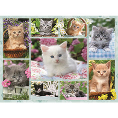 Пазл «Галерея котят» 500 шт Ravensburger