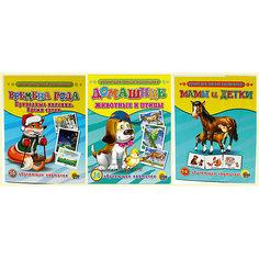 """Комплект из 3 наборов карточек  """"Мамы и детки, Домашние животные и птицы, Времена года"""" Проф Пресс"""