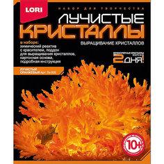 """Лучистые кристаллы """"Оранжевый кристалл"""" Lori"""