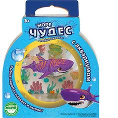 Акула-акробат Тайгер с аквариумом, Море чудес