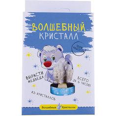 """Волшебные кристаллы """"Белый мишка"""" Бумбарам"""