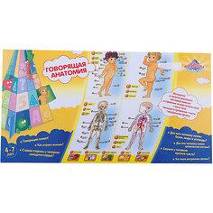 "Говорящий плакат ""Анатомия"" Kribly Boo"