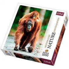 """Пазл """"Орангутан"""", 1000 деталей, Trefl"""