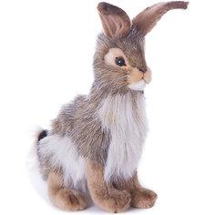 Чернохвостый заяц, 23 см Hansa