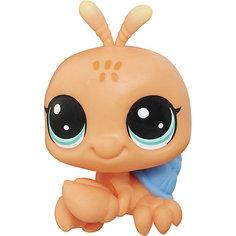 Фигурка Littlest Pet Shop, Краб-отшельник Hasbro