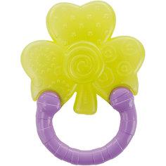 Мягкий прорезыватель для зубок Bright Starts  «Колечко», Цветок