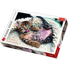 Пазлы Веселый котенок, 1000 элементов Trefl