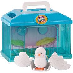 Интерактивная игрушка Moose Little Live Pets Цыпленок в яйце с домиком