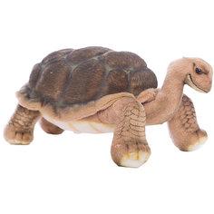 Галапагосская черепаха, 30 см Hansa