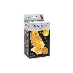 3D головоломка Сова янтарная Crystal Puzzle
