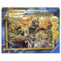 Раскрашивание по номерам «Тигры» Размер картинки – 40*30 см Ravensburger