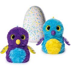 """Интерактивная игрушка Spin Master """"Hatchimals"""" Пингвинчик (голубой/фиолетовый)"""