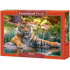 "Пазл Castorland ""Тигр"" 500 деталей"