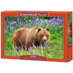 "Пазл Castorland ""Медведь на лугу"" 500 деталей"
