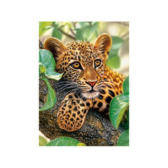 Пазл Ягуар на дереве, 300 деталей, Castor Land Castorland
