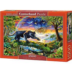 "Пазл Castorland ""Пантера"" 1500 деталей"