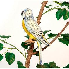 Попугай волнистый голубой, 15 см Hansa