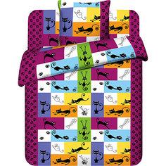 Детское постельное белье 1,5 сп. Василёк, Котомания