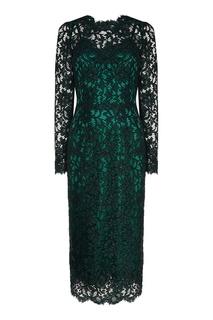 Платье-футляр из зеленого кружева Dolce & Gabbana