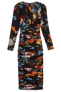 Платье с принтом и драпировкой Dolce & Gabbana