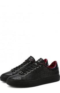 Кожаные кеды на шнуровке Roberto Cavalli