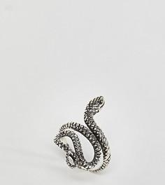 Серебряное кольцо со змеей Kingsley Ryan - Серебряный