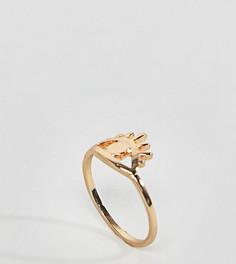 Кольцо с дизайном глаз ASOS DESIGN Curve - Золотой