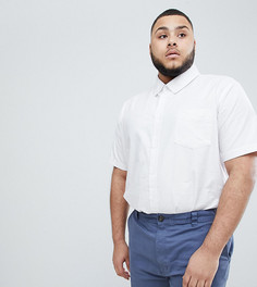 Белая оксфордская рубашка на пуговицах из 100% хлопка с короткими рукавами BadRhino Plus - Белый