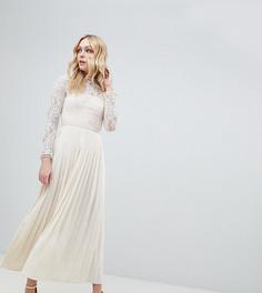 Платье с кружевом и плиссировкой на юбке Little Mistress Tall - Кремовый