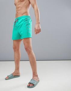 Шорты для плавания с логотипом Nike - Зеленый
