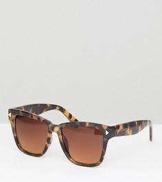 Большие черепаховые солнцезащитные очки South Beach - Коричневый