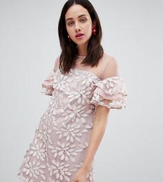 Платье с вышивкой Dolly & Delicious - Мульти
