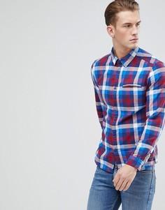 Облегающая рубашка в клетку Esprit - Синий