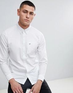Белая приталенная рубашка с логотипом и воротником на пуговицах Hollister - Белый