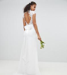 Платье с фигурным кружевом и открытой спиной TFNC Tall - Белый