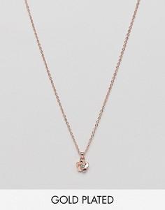 Позолоченное ожерелье с подвеской-цветком Ted Baker - Золотой