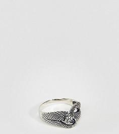 Серебряное кольцо ASOS DESIGN Plus - Серебряный