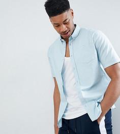 Базовая оксфордская рубашка с короткими рукавами D-Struct TALL - Синий