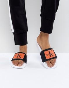 Черные шлепанцы с оранжевыми вставками Calvin Klein Chloe - Мульти