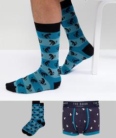 Боксеры-брифы и носки в подарочной упаковке Ted Baker - Мульти