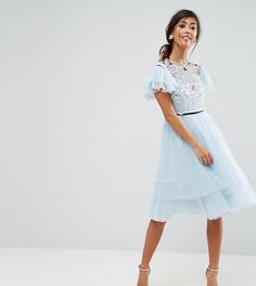 Платье мини из тюля ASOS PETITE - Серый
