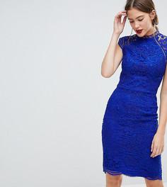 Кружевное платье-футляр Chi Chi London Tall - Синий