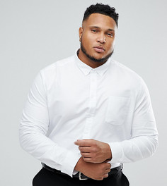 Оксфордская рубашка Burton Menswear PLUS - Белый