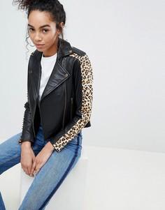 Кожаная байкерская куртка с леопардовым принтом на вставках Muubaa Laurel - Черный