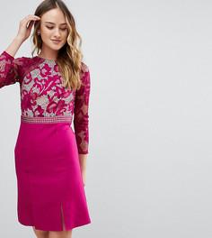 Короткое приталенное платье с длинными рукавами и кружевным верхом Little Mistress Tall - Фиолетовый