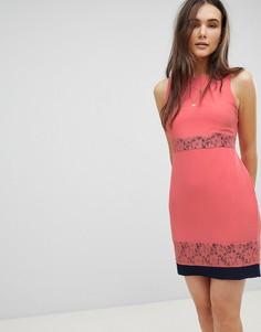 Короткое приталенное платье с кружевными вставками QED London - Розовый
